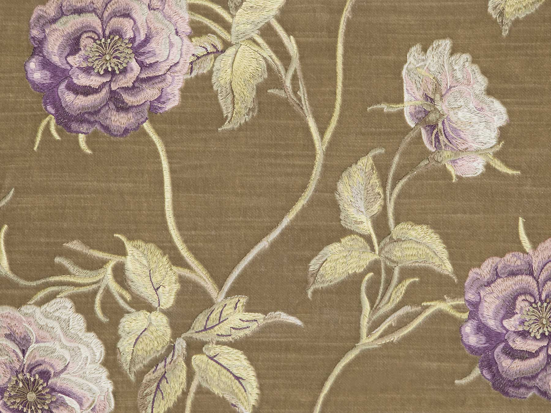 218/20 Jardin/Dark-Beige Коллекция: Showroom collection Part 1